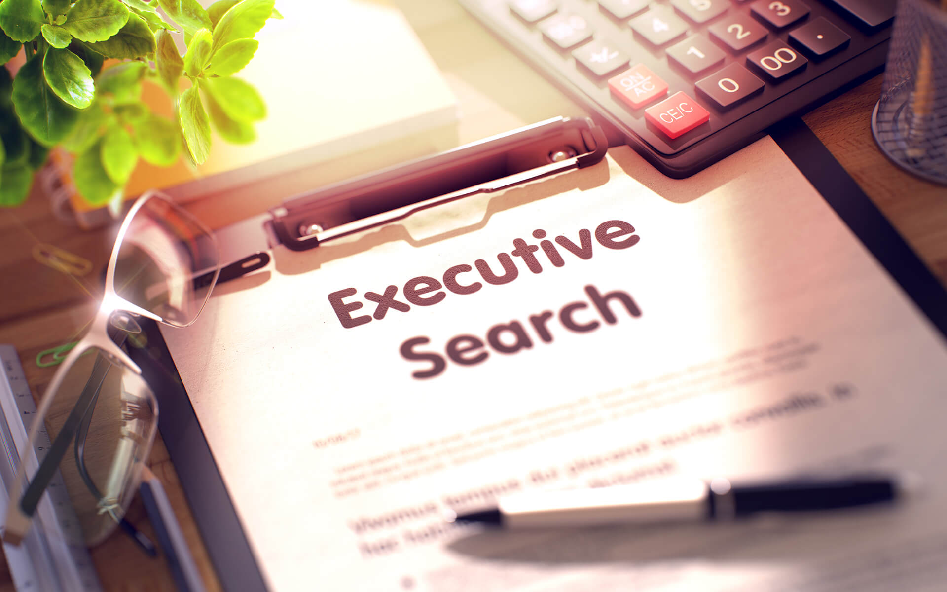 Karriere mit Alpha Headhunter - Executive Search - Direct Search